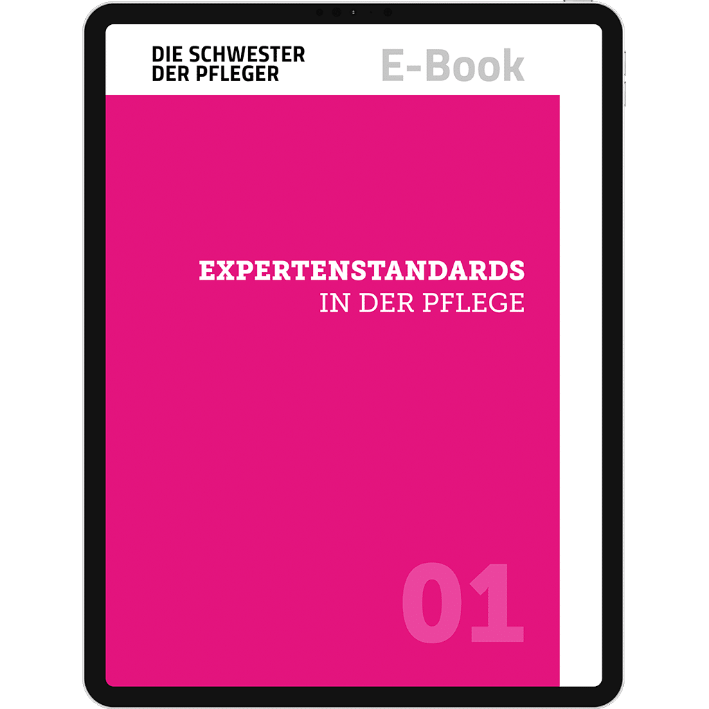 E-Book Expertenstandards in der Pflege